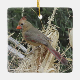 Female Northern Cardinal on Corn Tassel Ceramic Ornament
