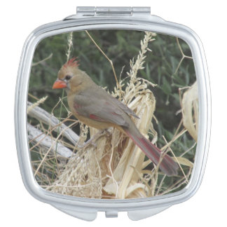 Female Northern Cardinal on Corn Tassel Vanity Mirrors