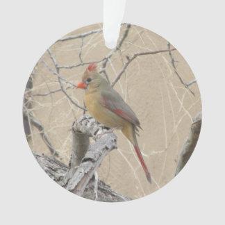 Female Northern Cardinal Ornament