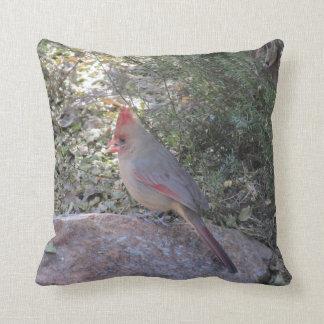 Female Northern Cardinal Pillow