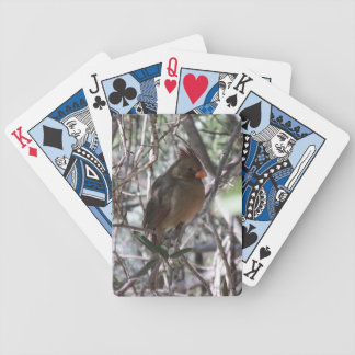 Female Northern Cardinal Playing Cards