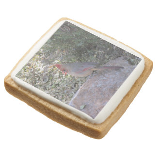 Female Northern Cardinal Square Shortbread Cookie