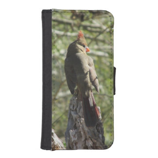 Female Northern Cardinal Wallet Phone Case For iPhone SE/5/5s