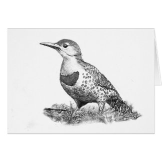 Female Northern Flicker Card