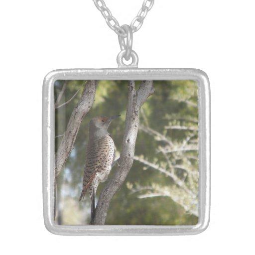 Female Northern Flicker Woodpecker Necklace