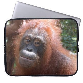 Female Orangutan in Borneo Laptop Sleeve