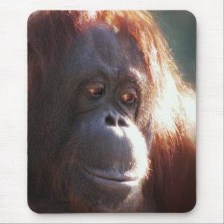 Female Orangutan Mouse Pad