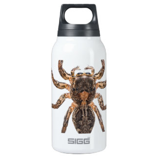 Female Pantropical Jumping Spider SIGG Thermo 0.3L Insulated Bottle