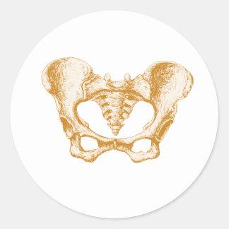Female Pelvis Sepia Classic Round Sticker