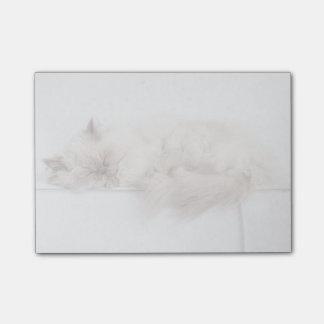 Female Persian Cat Post-it Notes