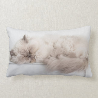 Female Persian Cat Throw Pillow