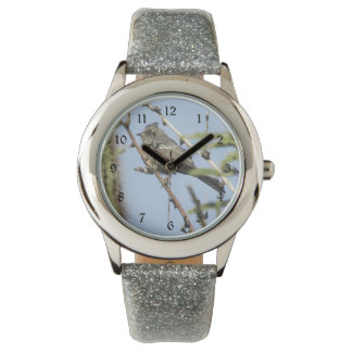 Female Phainopepla Watch