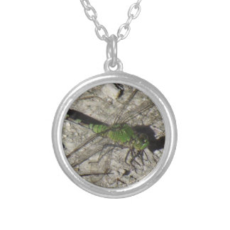 Female Podhawk Dragonfly Pendent Necklaces