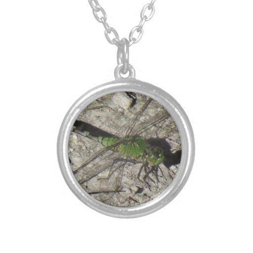 Female Podhawk Dragonfly Pendent Round Pendant Necklace