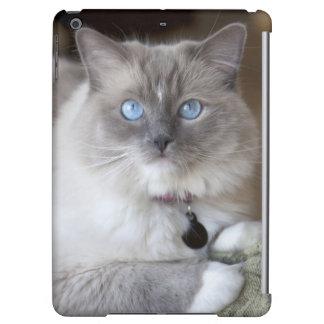 Female Ragdoll Cat Case For iPad Air