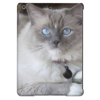 Female Ragdoll Cat Cover For iPad Air