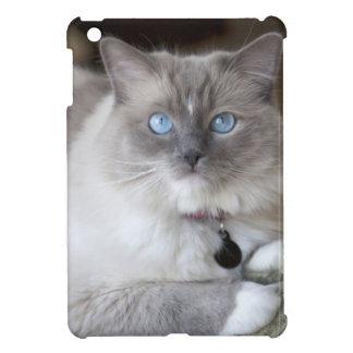 Female Ragdoll Cat Cover For The iPad Mini