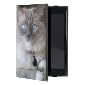Female Ragdoll Cat Covers For iPad Mini