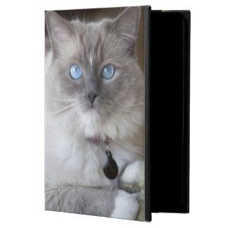 Female Ragdoll Cat iPad Air Case