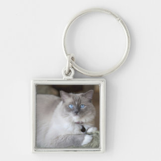 Female Ragdoll Cat Keychain
