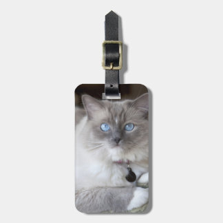 Female Ragdoll Cat Travel Bag Tag