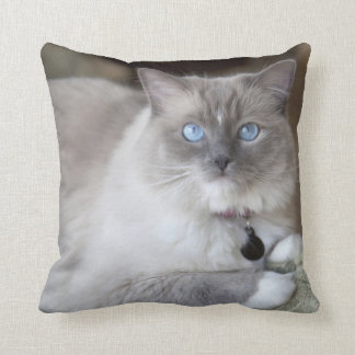 Female Ragdoll Cat Throw Pillow