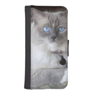 Female Ragdoll Cat Wallet Phone Case For iPhone SE/5/5s