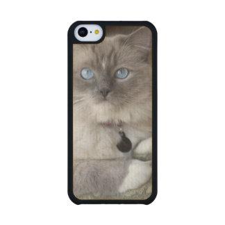 Female Ragdoll Cat Carved® Maple iPhone 5C Slim Case