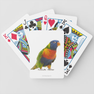 Female Rainbow Lorikeet - Trichoglossus Bicycle Playing Cards