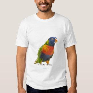Female Rainbow Lorikeet - Trichoglossus Tee Shirt