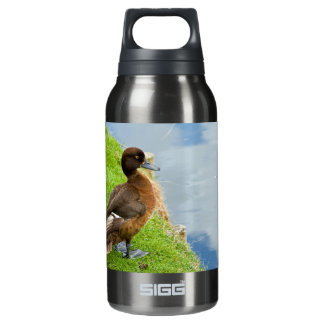 Female reddish Brown Tufted Diving Duck in grass Insulated Water Bottle