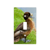 Female reddish Brown Tufted Diving Duck in grass Light Switch Cover