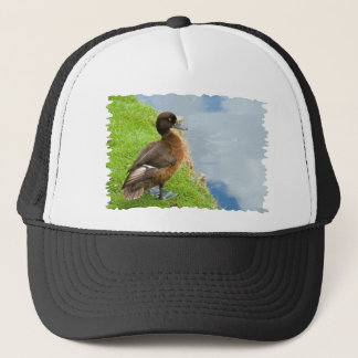 Female reddish Brown Tufted Diving Duck in grass Trucker Hat