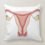 Female Reproductive System 2 Pillow