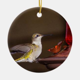 Female Ruby-throated Hummingbird Ceramic Ornament