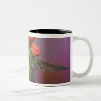 Female Ruby Throated Hummingbird in flight, Two-Tone Coffee Mug