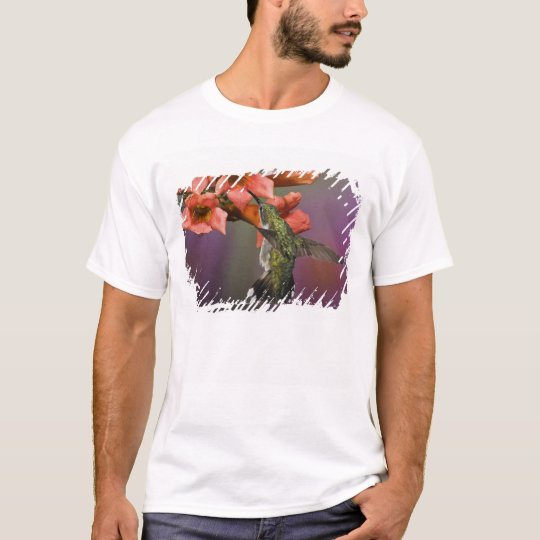 Female Ruby Throated Hummingbird in flight, T-Shirt