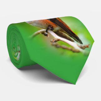 Female Rufous Hummingbird on the Plum Tree Neck Tie