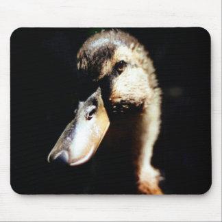 Female Rune Duck Mousepad