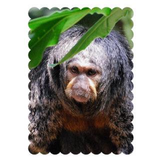 Female Saki Monkey Invite