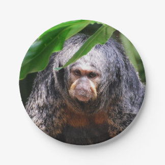Female Saki Monkey 7 Inch Paper Plate