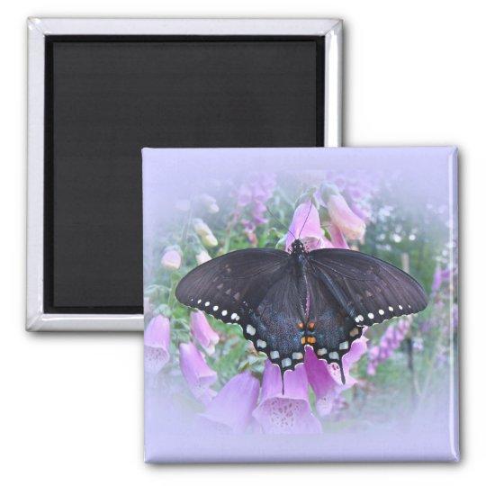 Female Spicebush Swallowtail Butterfly Magnet
