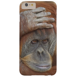 Female Sumatran Orangutan, Pongo pygmaeus Barely There iPhone 6 Plus Case