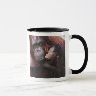 Female Sumatran Orangutan with baby, Pongo Mug