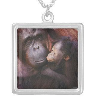 Female Sumatran Orangutan with baby, Pongo Square Pendant Necklace