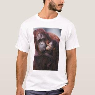 70f8cd50f Orangutan T-Shirts - T-Shirt Design & Printing | Zazzle