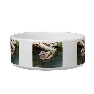 Female Wood Duck Bowl