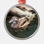 Female Wood Duck Christmas Tree Ornaments