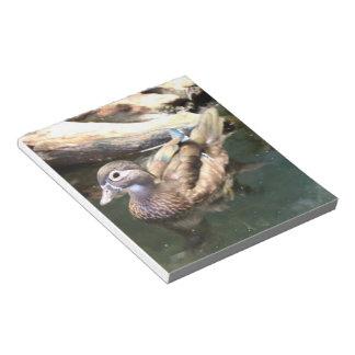 Female Wood Duck Notepad