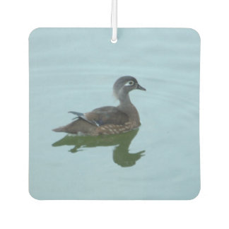 Female Wood Duck Photo Air Freshener